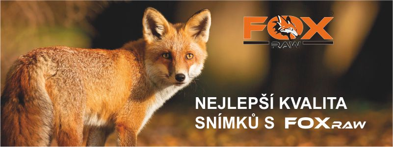 FOXraw